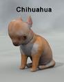 Mostdigitalcreations-Chihuahua.png