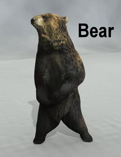 Mostdigitalcreations-bear.png