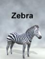 MostDigitalCreations-Zebra.png