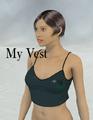 AerySoul-MyVest.png