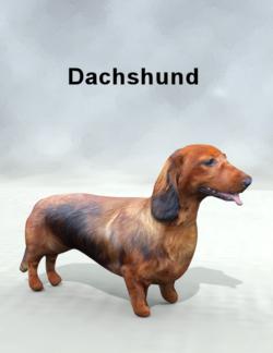 Mostdigitalcreations-dachshund.png