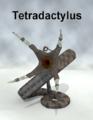 Ancestorsrelic-Tetradactylus.png