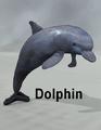 Mostdigitalcreations-Dolphin.png