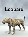 MostdigitalCreations-Leopard.png