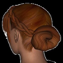 Missy Hair.png