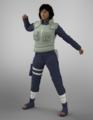 Shinteo-Shinobi Armor Female.png