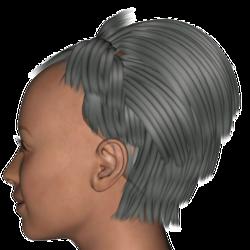 Tarah Hair V4.png